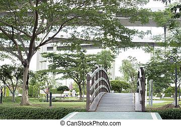 spaziergang, weg, und, brücke, in, grüner park