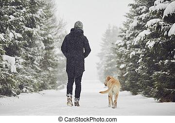 spaziergang, winter