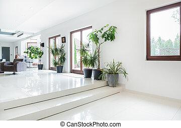 spazio, in, costoso, casa