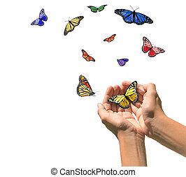 spazio, mani, rilasciare, farfalle, vuoto, bianco