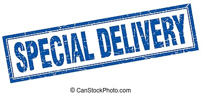 special delivery blue square grunge stamp on white