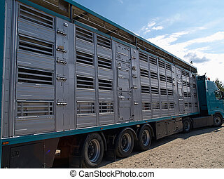 Special truck and trailer for transportation of pigs - ...