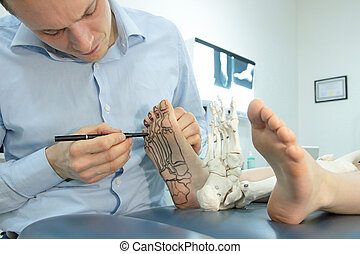 Specialist drawing bones of foot on the skin