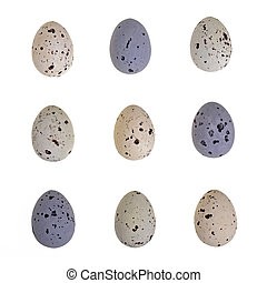 Speckled egg tic-tac-toe - Speckled chocolate Easter eggs...