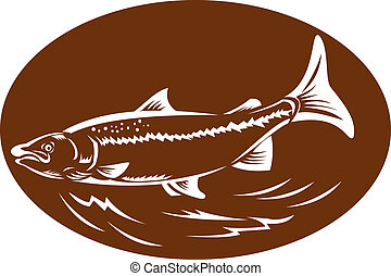 speckled spotted trout fish retro woodcut