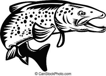 speckled-trout-jumping-woodcut-retro-bw-cut