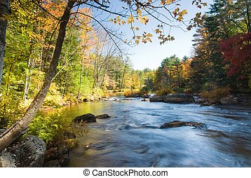 Swift river running accross a colorful fall forest