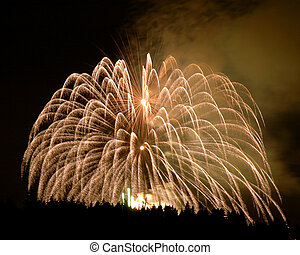 Spectacular fireworks above the stanley park tree in Vancouver