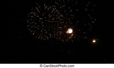 Spectacular fireworks igniting the sky