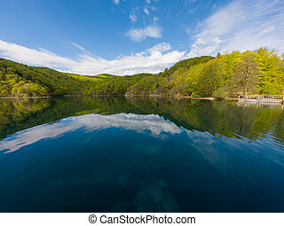 Spectacular lake shore panorama of green forest.