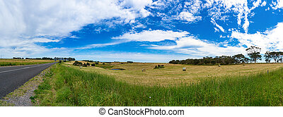 Spectacular panorama of countryside road and field