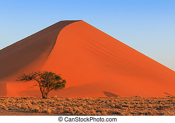 Spectacular red dune of always shifting sand. At sunset Sossusvlei, Namibia, Africa.