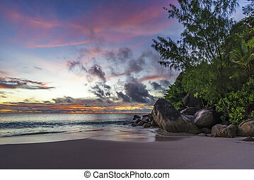 Spectacular romantic purple sunset at anse georgette, praslin, seychelles 4