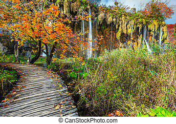 Spectacular tourist pathway in colorful autumn forest, Plitvice lakes, Croatia