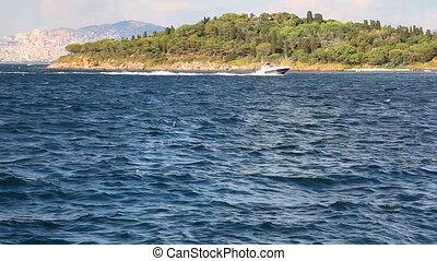 speed boat, shoot Canon 5D Mark II