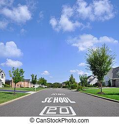 Speed Limit Suburban Neighborhood