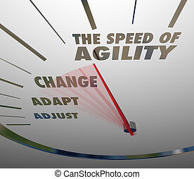 Speed of Agility Speedometer Quick Change Adaptation - The...