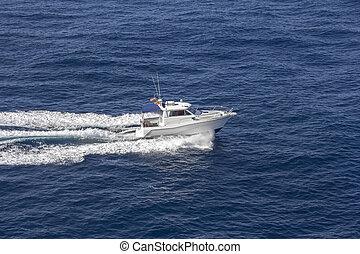 Speedboat rides on the sea