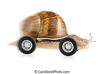 Speedy snail on wheels, with partial motion blur and white...