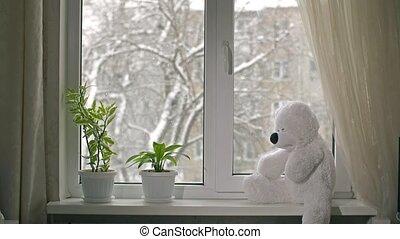 speelbal, beer, op, windowsill