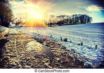 spektakulär, solnedgång, över, snö täckte, field., natur, bakgrund