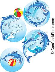 spelen bal, dolfijnen