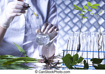 sperimentare, con, flora
