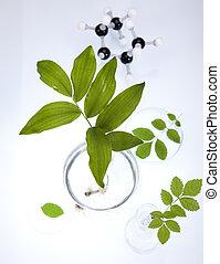 sperimentare, flora