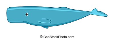 Sperm whale fish on a white background