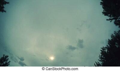 sphérique, timelapse., nuages, panorama, défaillance, degré, parc, nuages, flotter, planète, forêt, vidéo, boucle, chronométrer passer, sur, 360