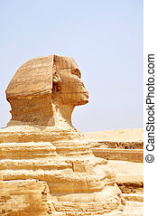 Sphinx in Cairo,Egyp
