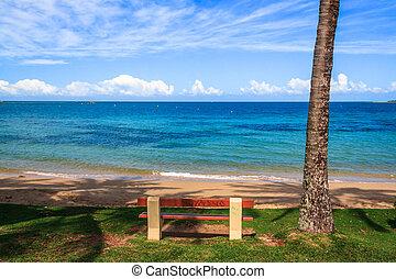 spiaggia, a, nuova caledonia