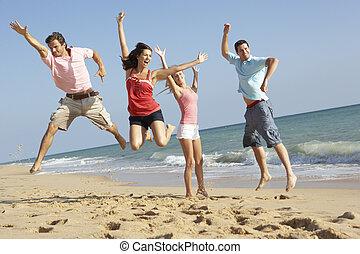 spiaggia, amici, godere, vacanza, gruppo