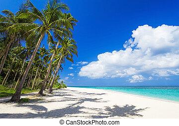 spiaggia, bellezza