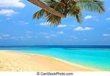spiaggia, bello