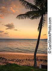 spiaggia, caledonia, noumea, nuovo