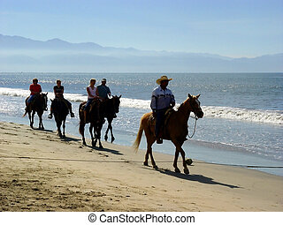 spiaggia, cavalieri
