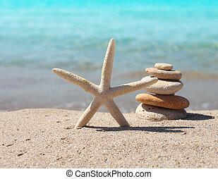 spiaggia, due, starfish