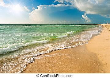 spiaggia, fl, miami