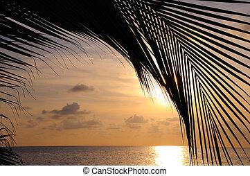 spiaggia, fondo, tramonto