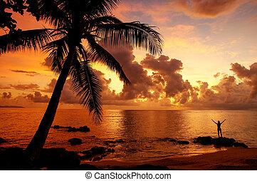 spiaggia, isola, taveuni, figi, alba, villaggio, colorito, ...