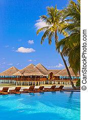 spiaggia, maldive, caffè, stagno