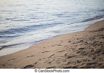 spiaggia., mare, fondo