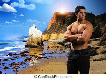 spiaggia, muscolare, uomo