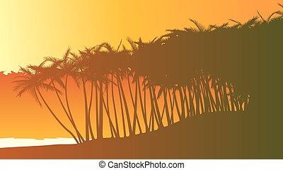 spiaggia., palma, illustrazione, albero