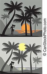 spiaggia, palma, tramonto