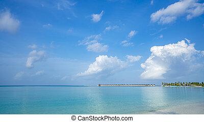 spiaggia, paradiso tropicale, perfetto, isola