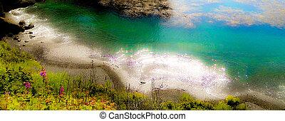 spiaggia, punto, muschio, bello, lobos