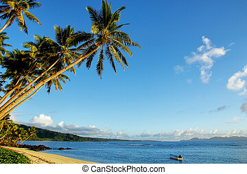 spiaggia sabbiosa, in, lavena, villaggio, su, isola taveuni, figi