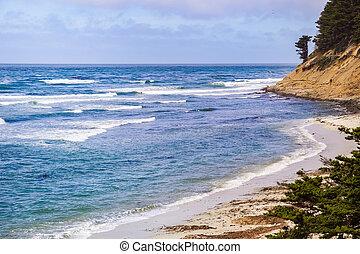 spiaggia, scenico, oceano pacifico, linea costiera, california, muschio